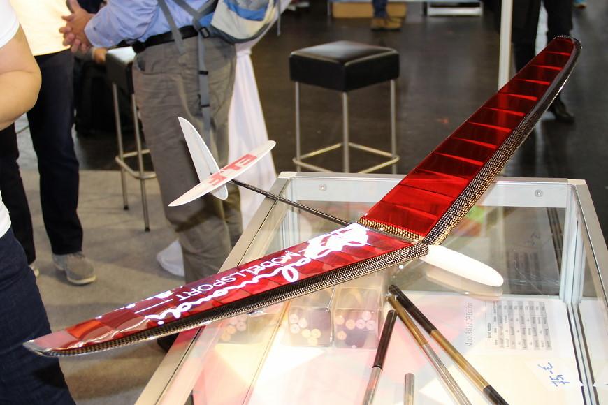 Faszination Modellbau 2017 Friedrichshafen: ELF Discus Launch Glider von Vladimir's Model