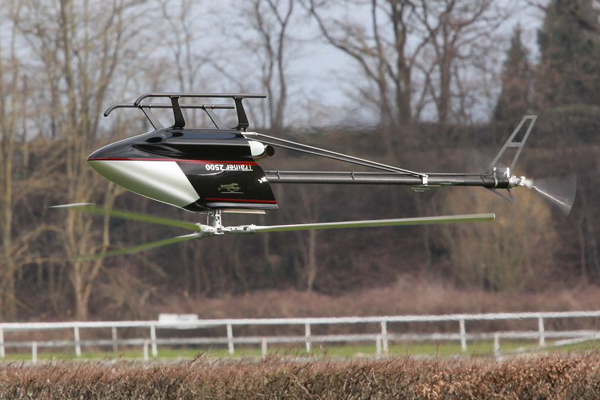 Rotor live 2016: Trainer 2500 (Alterbaum Premium Helicopter)